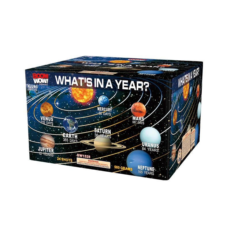 BW1528 - What'S In A Year? 24 Shot