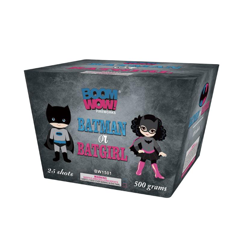 BW1501 - Batman Or Batgirl
